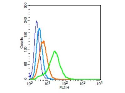 PAFR Antibody, Biotin Conjugated
