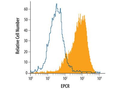 Mouse EPCR Biotinylated Antibody