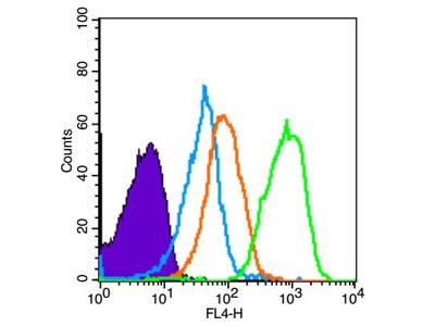 TRIM32/BBS11 Antibody, Cy3 Conjugated