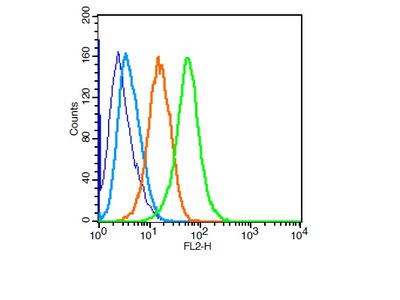 PUMA ANTIBODY, Biotin Conjugated