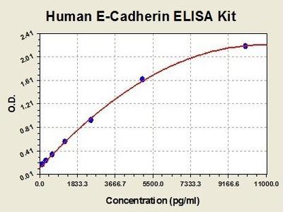 Human E Cadherin ELISA Kit