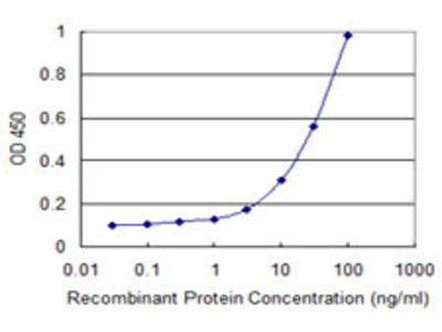 CXCL1 / GRO Alpha Monoclonal Antibody