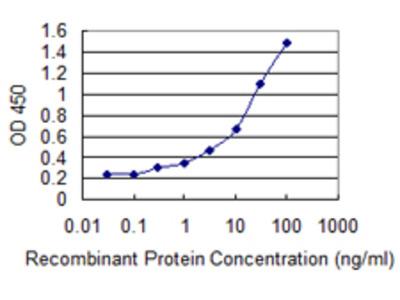 ADORA2A/Adenosine A2A Receptor Monoclonal Antibody