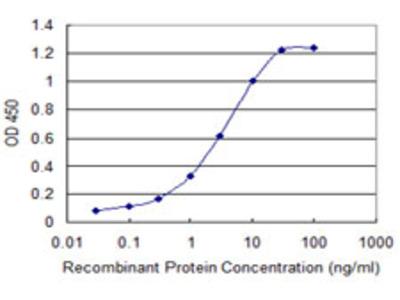 SH3RF1 / POSH Monoclonal Antibody