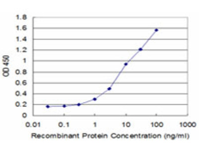 SLC2A4 / GLUT-4 Monoclonal Antibody