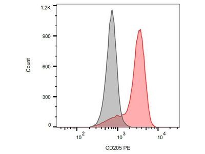 anti CD205 / DEC-205