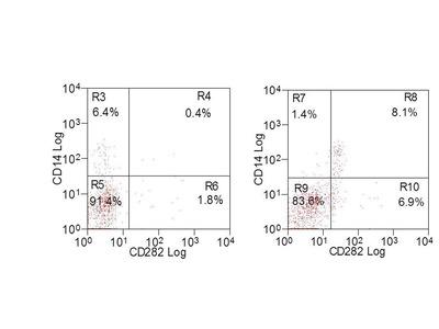 HUMAN ANTI BOVINE CD282