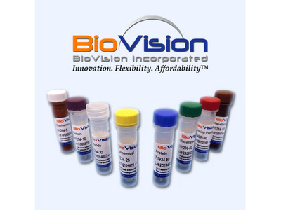 BIF Blocking Peptide