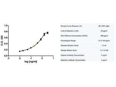 Anti-Fas Ligand antibody [14C2]