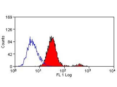 Anti-ABCA1 antibody [5A1-1422] (FITC)