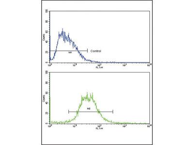 Anti-IL17 Receptor beta antibody, Internal