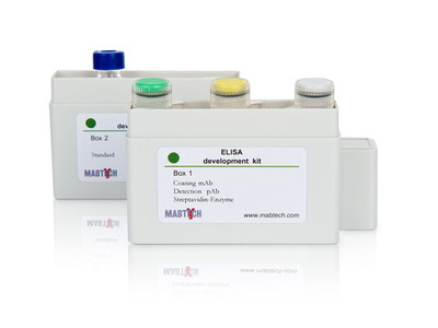 Monkey IgA ELISA development kit (HRP)