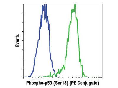 Phospho-p53 (Ser15) (16G8) Mouse mAb (PE Conjugate)