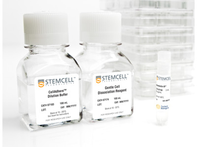 Non Tissue Culture-Treated 6-Well Plates from STEMCELL