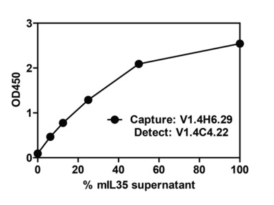 IL-35 EBI3 Antibody