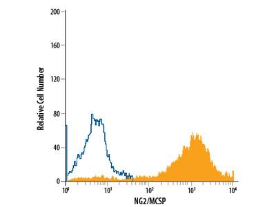 NG2 / MCSP APC-conjugated Antibody