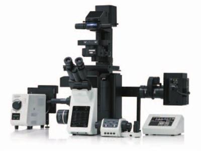IX53 Inverted Microscope