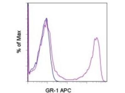 Ly-6G / Ly-6C Antibody (RB6-8C5)
