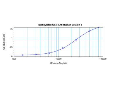 Eotaxin-3 Antibody (biotin)