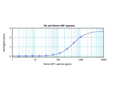 MIP-1gamma Antibody
