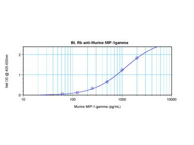 MIP-1gamma Antibody (biotin)