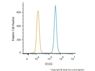 Sox2 Antibody from Novus Biologicals