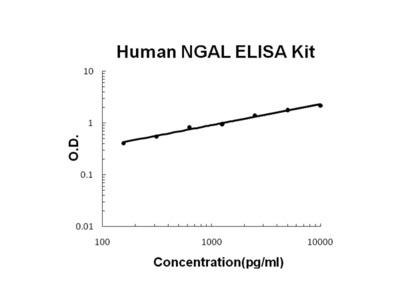 Human Lipocalin-2/NGAL PicoKine ELISA Kit