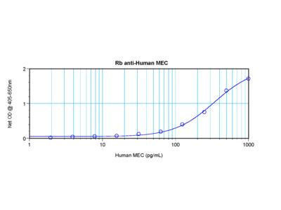 MEC Antibody