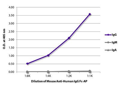Mouse Anti-Human IgG Fc-AP