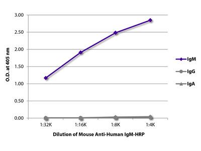 Mouse Anti-Human IgM-HRP
