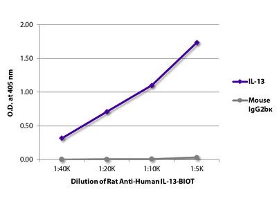 Rat Anti-Human IL-13-BIOT