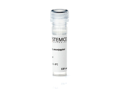 Anti-Mouse EPCR Antibody, Clone RMEPCR1560 (1560)