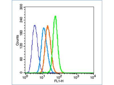 CD4 Antibody, ALEXA FLUOR® 488 Conjugated