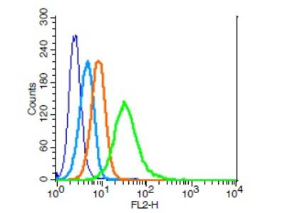 IL-2R gamma Antibody, ALEXA FLUOR® 350 Conjugated