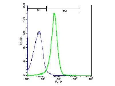 NFAM1 Antibody, ALEXA FLUOR® 350 Conjugated