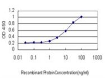IL-1 RAPL1 / IL-1 R8 Antibody (1C10)