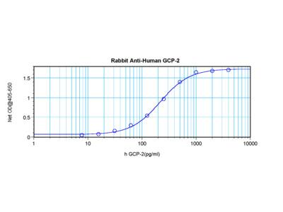 GCP-2 Antibody
