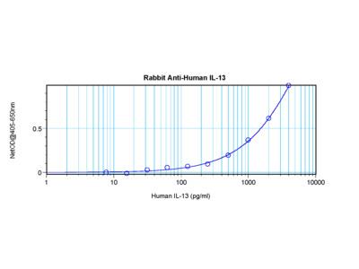 IL-13 Antibody