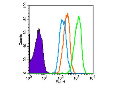 CD2 Antibody, ALEXA FLUOR® 350 Conjugated