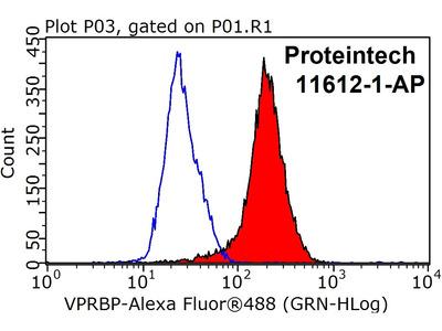 VPRBP antibody - KD/KO Validated