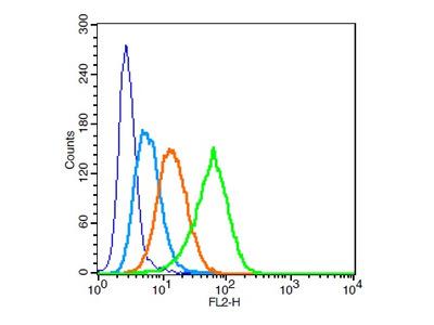 CD13/APN/ANPEN Antibody, ALEXA FLUOR® 350 Conjugated