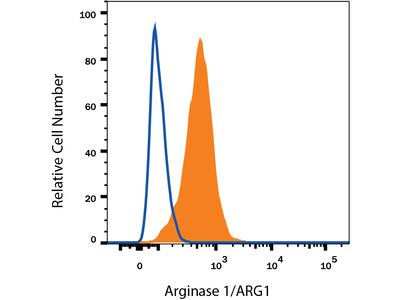 Arginase 1 / ARG1 PE-conjugated Antibody