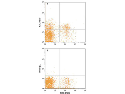FCRL3 / FcRH3 APC-conjugated Antibody