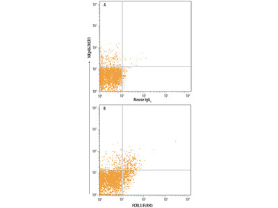 FCRL3 / FcRH3 Antibody
