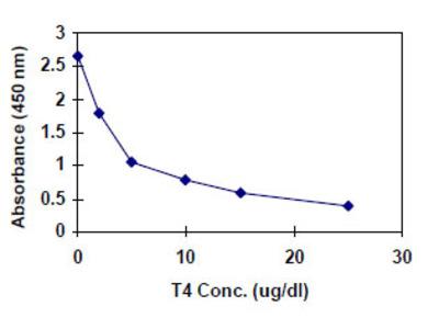 Total Thyroxine (T4) ELISA Kit (Human) : 96 Wells (OKBA00024)