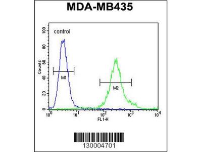 FBXL2 Antibody - C-terminal region (OAAB02444)