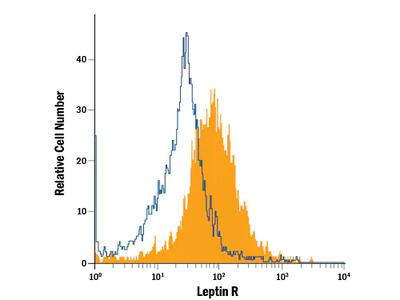Leptin R APC-conjugated Antibody