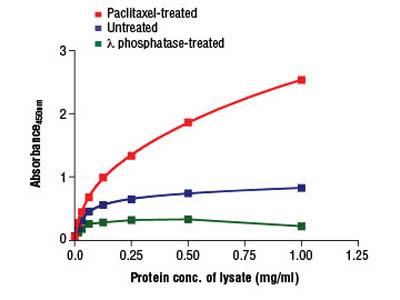 PathScan ® Phospho-Bcl-2 (Ser70) Sandwich ELISA Kit
