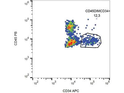 anti-CD34 antibody