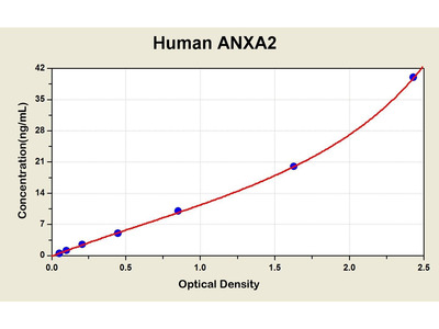 Annexin A2 ELISA Kit